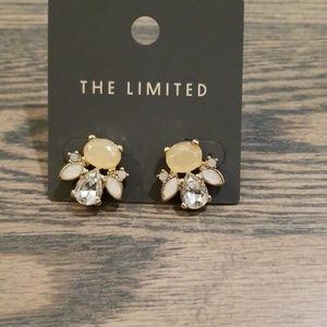 NWT Gorgeous earrings
